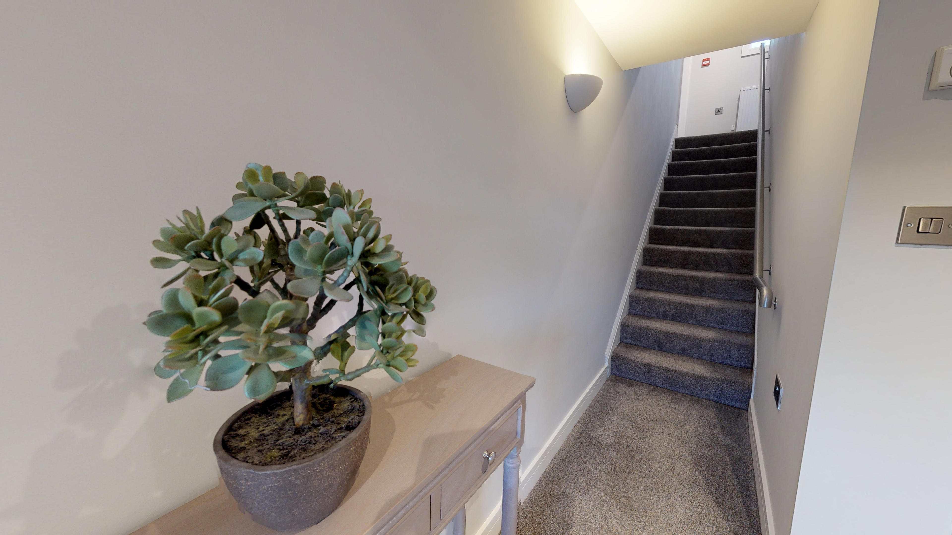 Leamington Spa Serviced Apartments Dunara Shakespeare Stairs Up